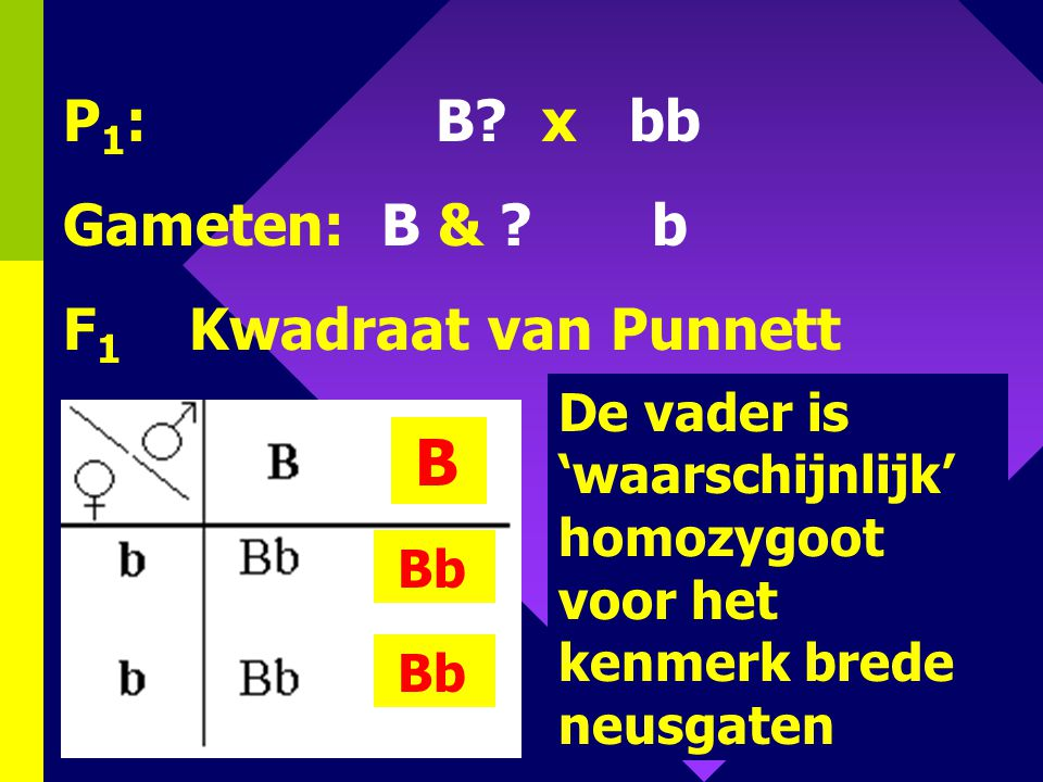 P1: B x bb Gameten: B & b F1 Kwadraat van Punnett