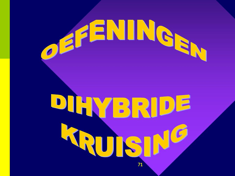 OEFENINGEN DIHYBRIDE KRUISING