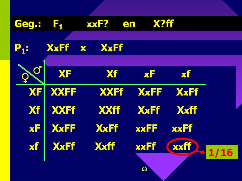 ♂ ♀ Geg.: F1 xxF en X ff P1: XxFf x XxFf XF Xf xF xf