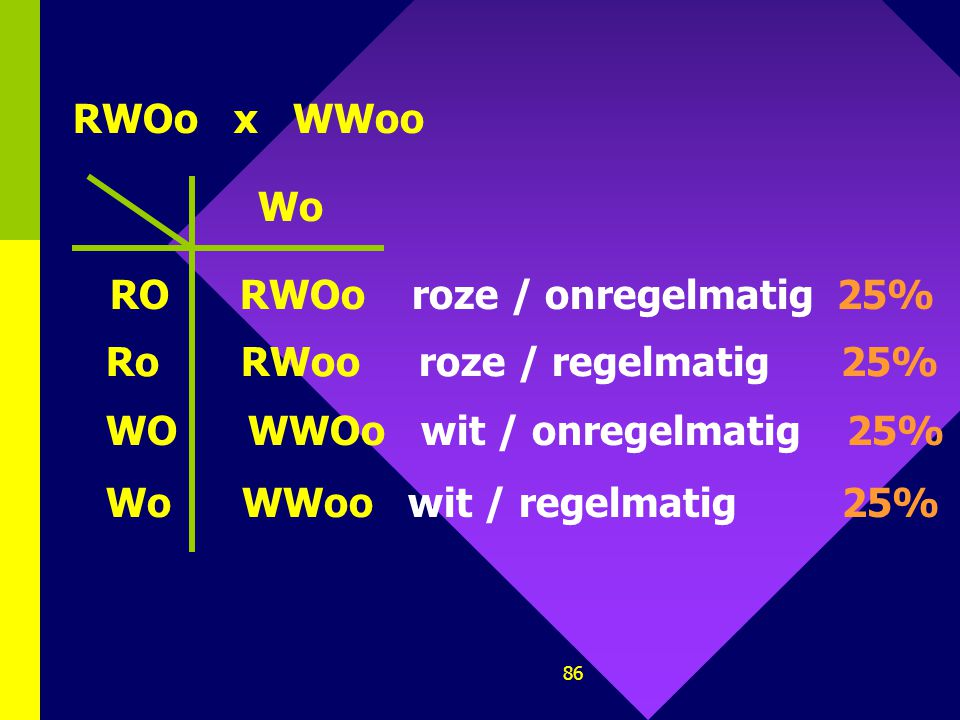 RWOo x WWoo Wo. RO RWOo roze / onregelmatig 25% Ro RWoo roze / regelmatig 25%