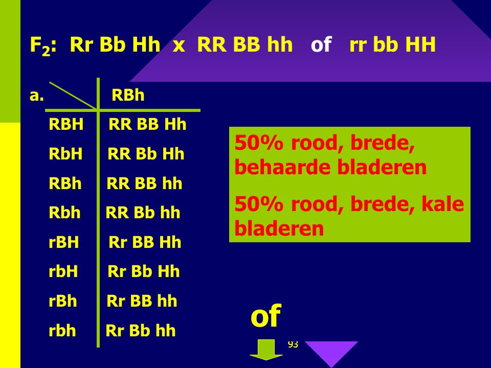 of F2: Rr Bb Hh x RR BB hh of rr bb HH