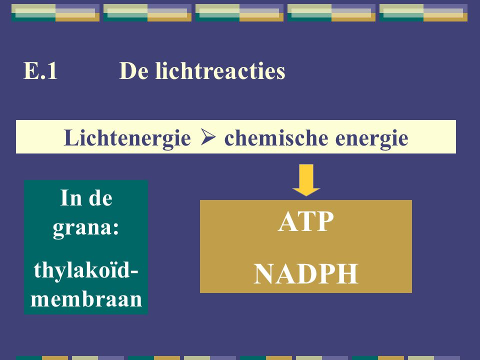 Lichtenergie  chemische energie