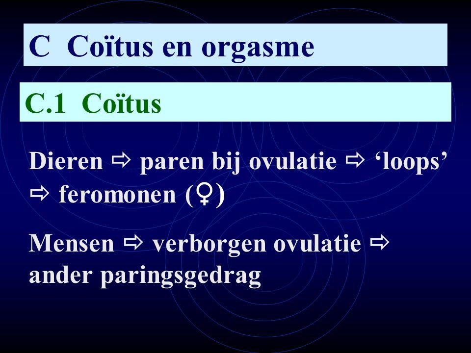 C Coïtus en orgasme C.1 Coïtus