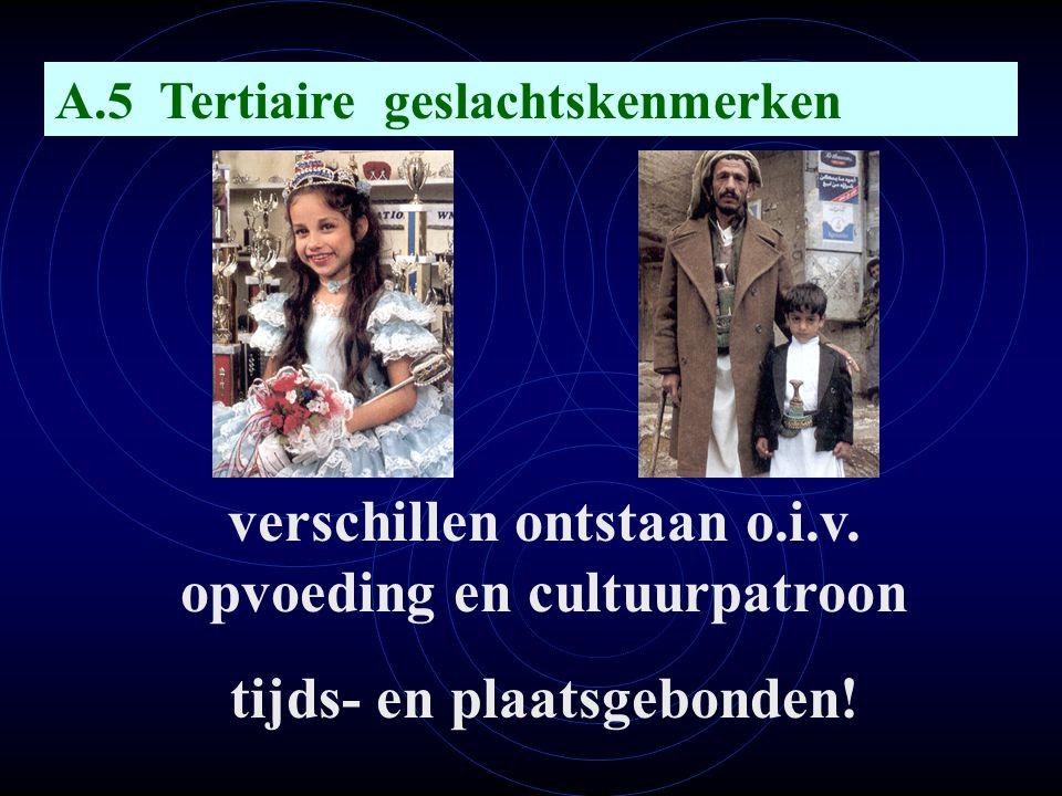 verschillen ontstaan o.i.v. opvoeding en cultuurpatroon