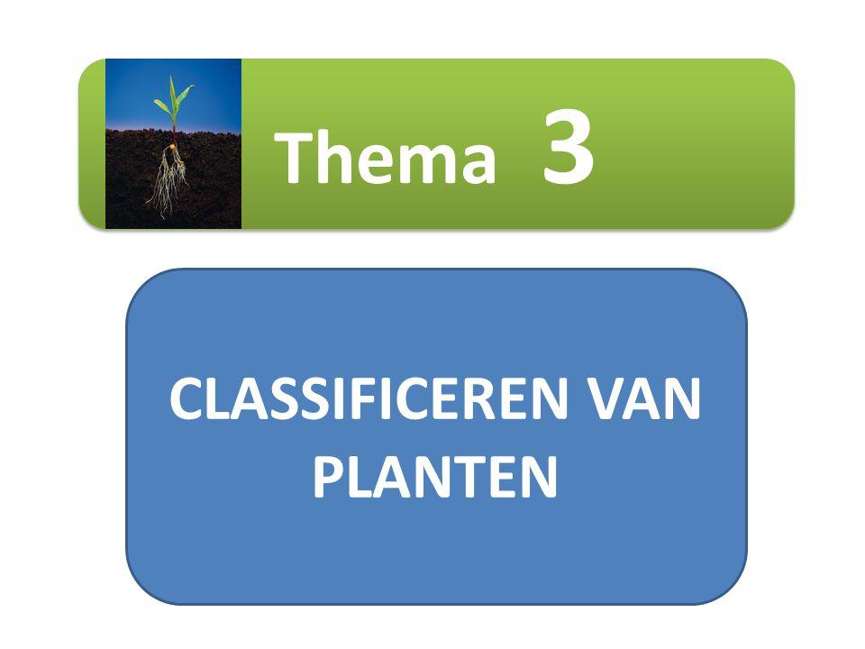 CLASSIFICEREN VAN PLANTEN