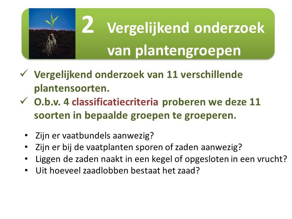 2 Vergelijkend onderzoek van plantengroepen