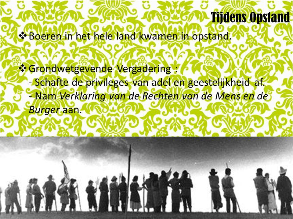 Tijdens Opstand Boeren in het hele land kwamen in opstand.