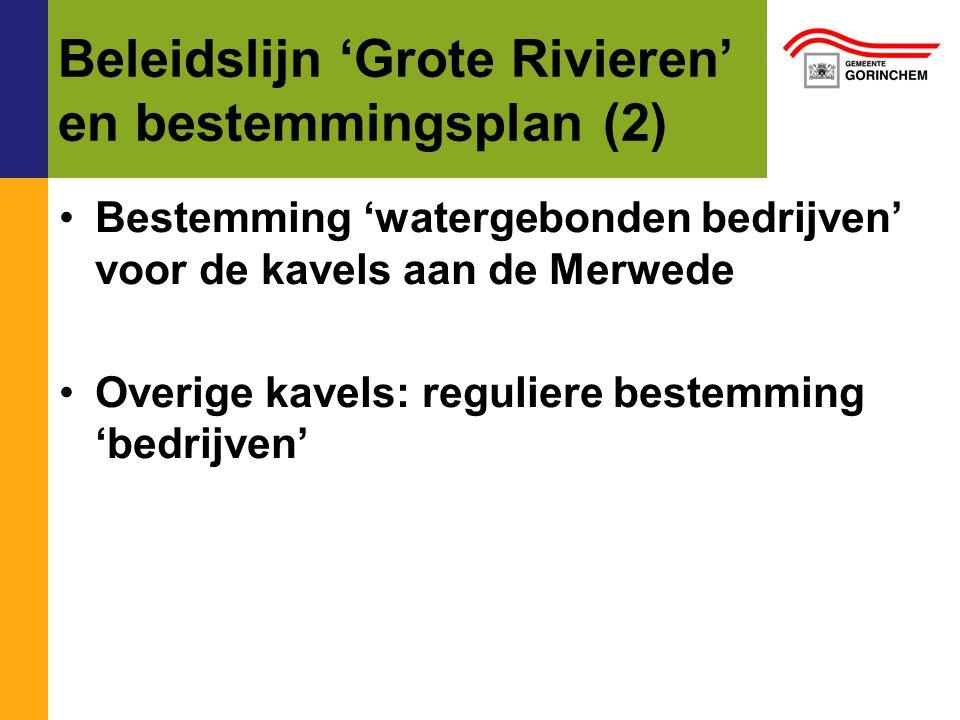 Beleidslijn 'Grote Rivieren' en bestemmingsplan (2)