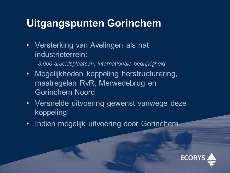 Uitgangspunten Gorinchem