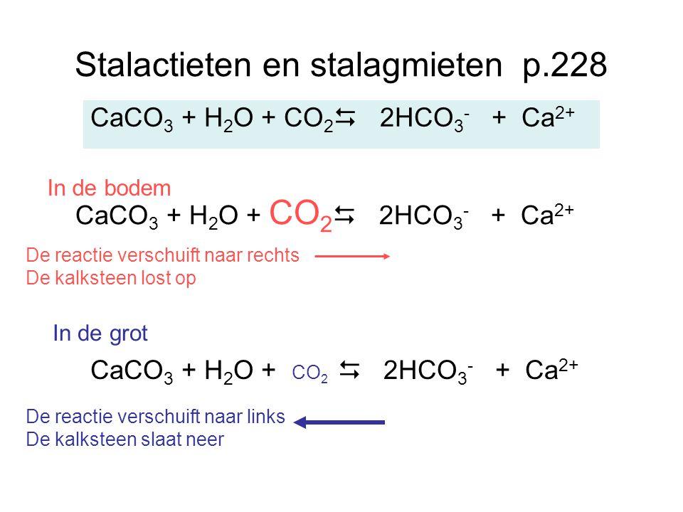 Stalactieten en stalagmieten p.228