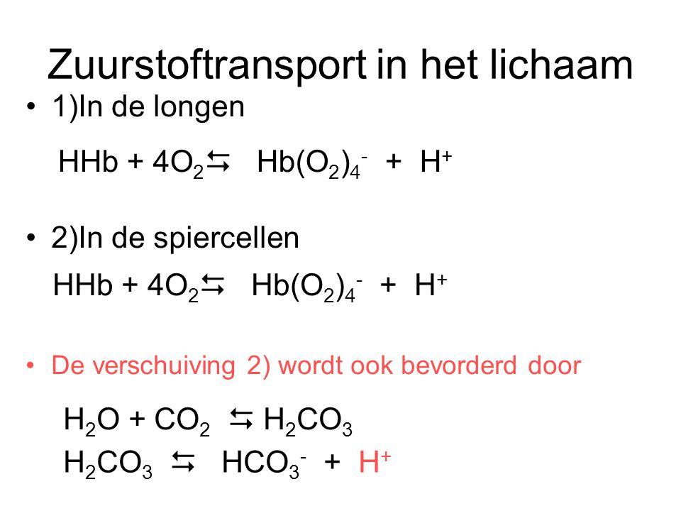 Zuurstoftransport in het lichaam
