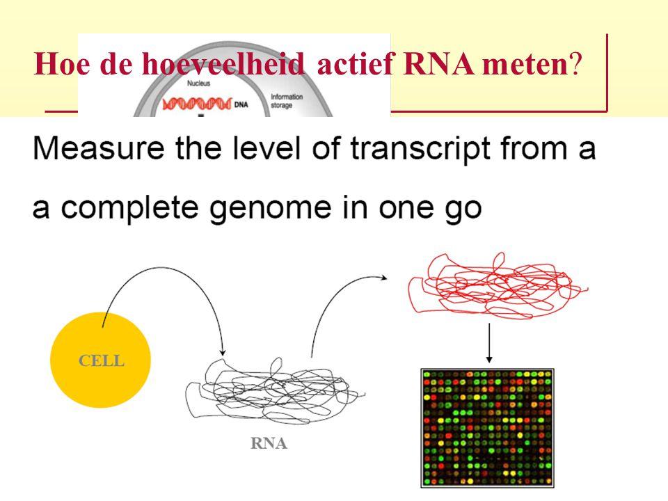 Hoe de hoeveelheid actief RNA meten