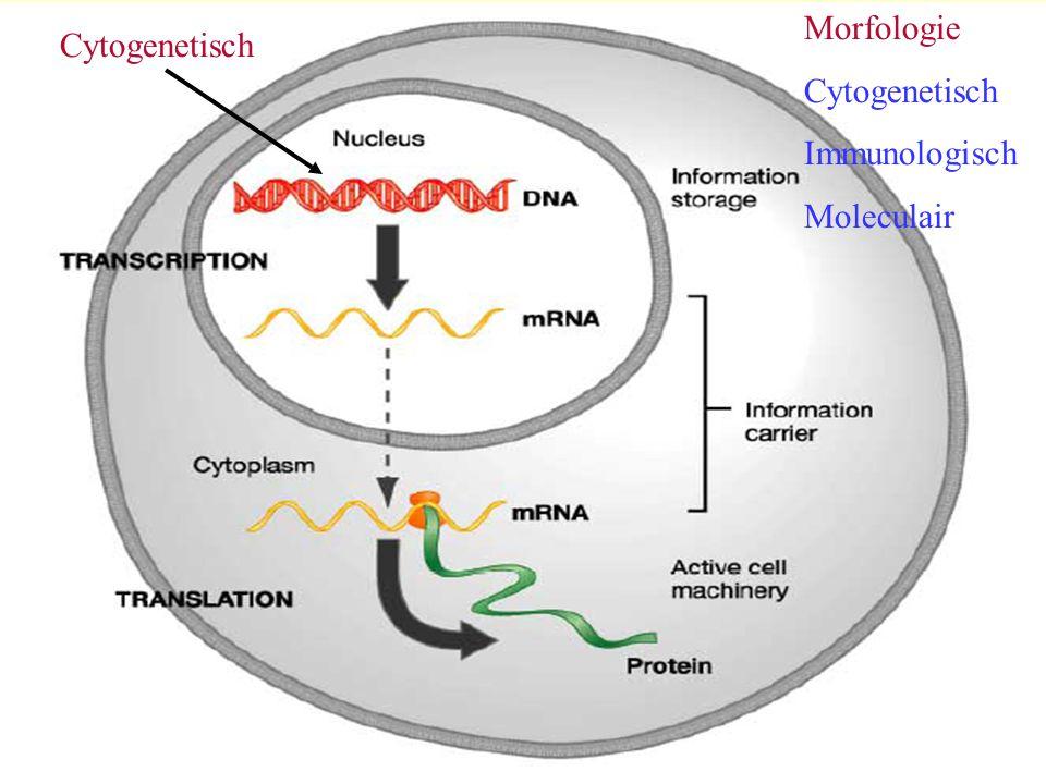 Morfologie Cytogenetisch Immunologisch Moleculair Cytogenetisch