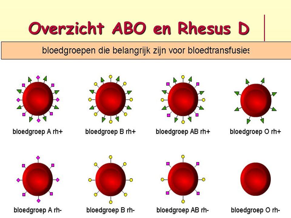 Overzicht ABO en Rhesus D