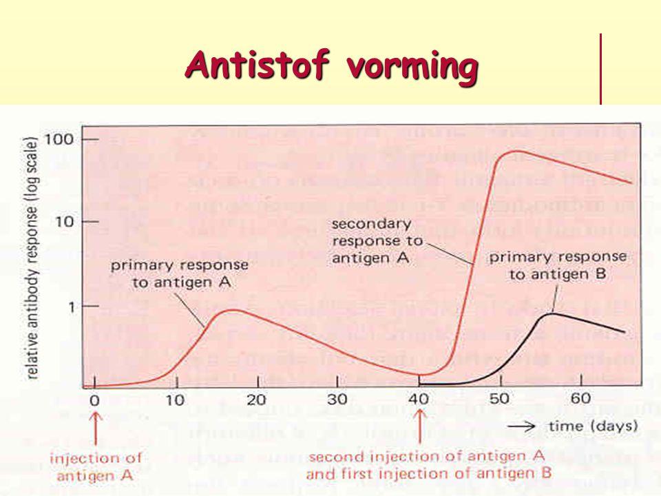 Antistof vorming