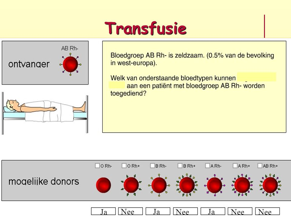 Transfusie Ja Nee Ja Nee Ja Nee Nee