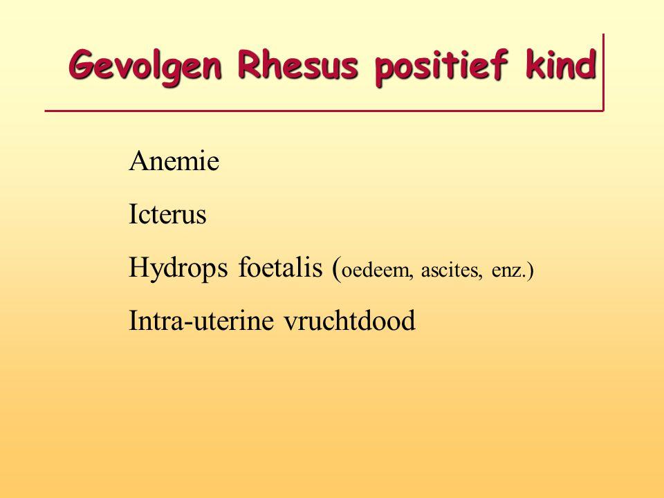 Gevolgen Rhesus positief kind