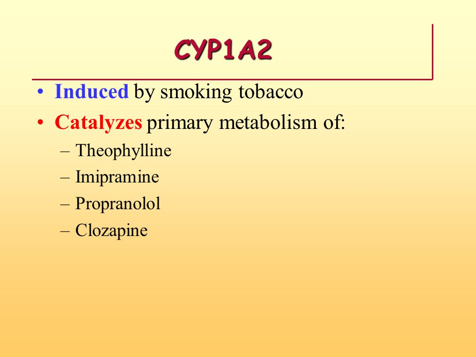 CYP1A2 Induced by smoking tobacco Catalyzes primary metabolism of: