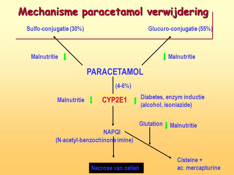 (N-acetyl-benzochinone imine)