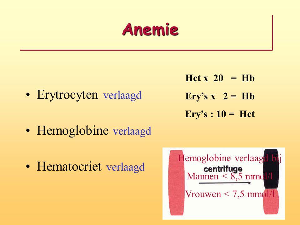 Hemoglobine verlaagd bij