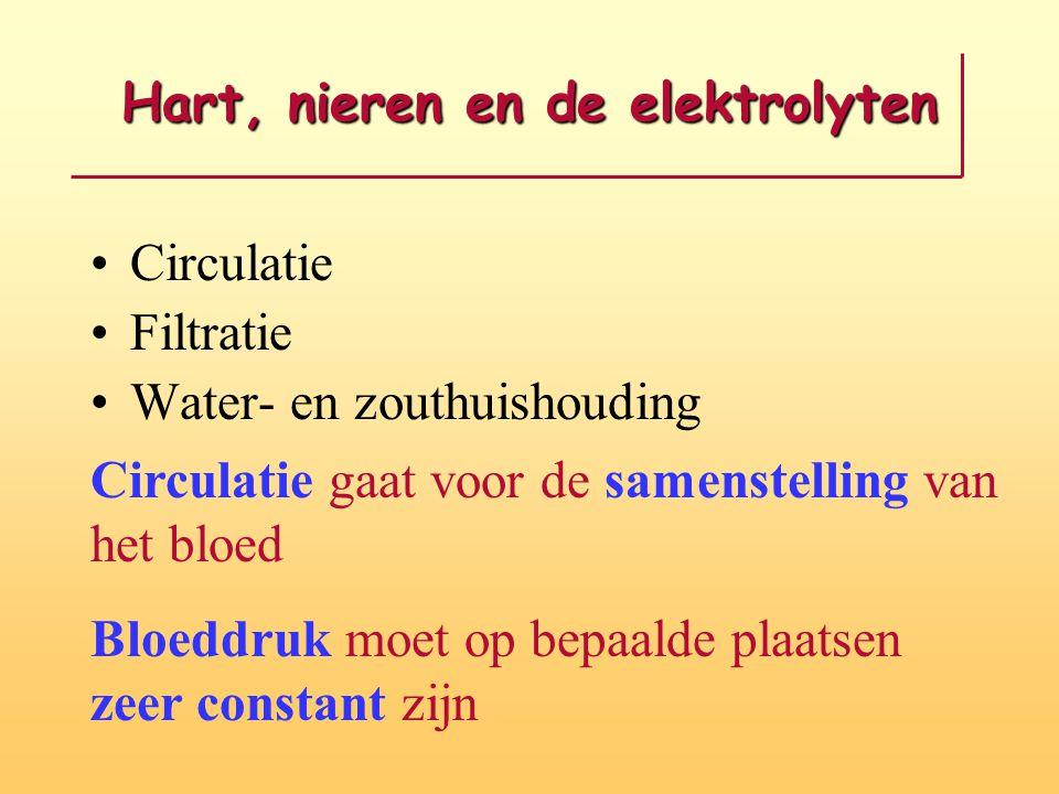Hart, nieren en de elektrolyten