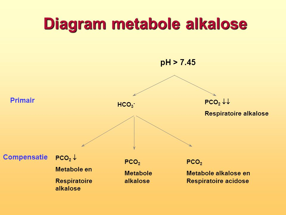 Diagram metabole alkalose