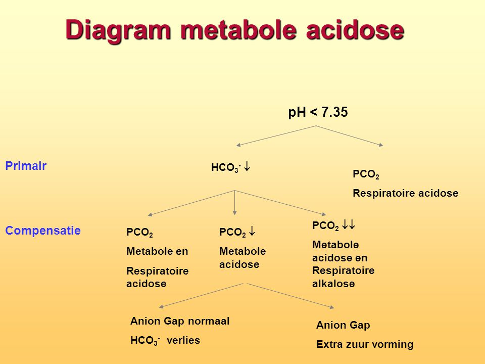 Diagram metabole acidose