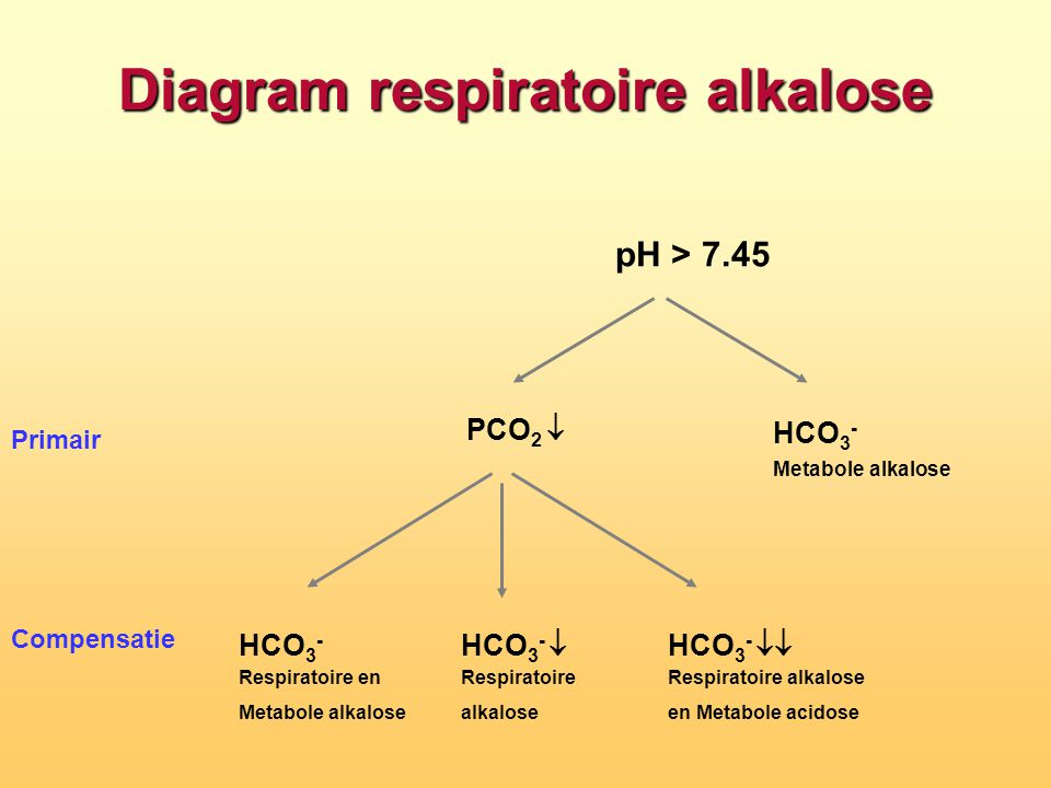 Diagram respiratoire alkalose
