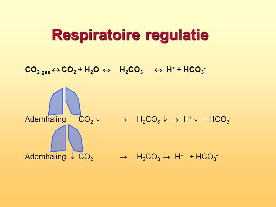 Respiratoire regulatie
