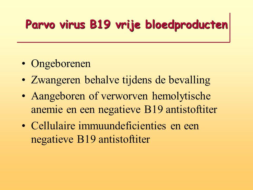 Parvo virus B19 vrije bloedproducten