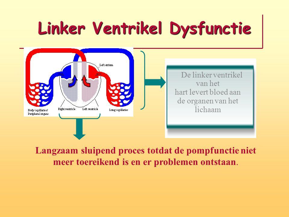 Linker Ventrikel Dysfunctie