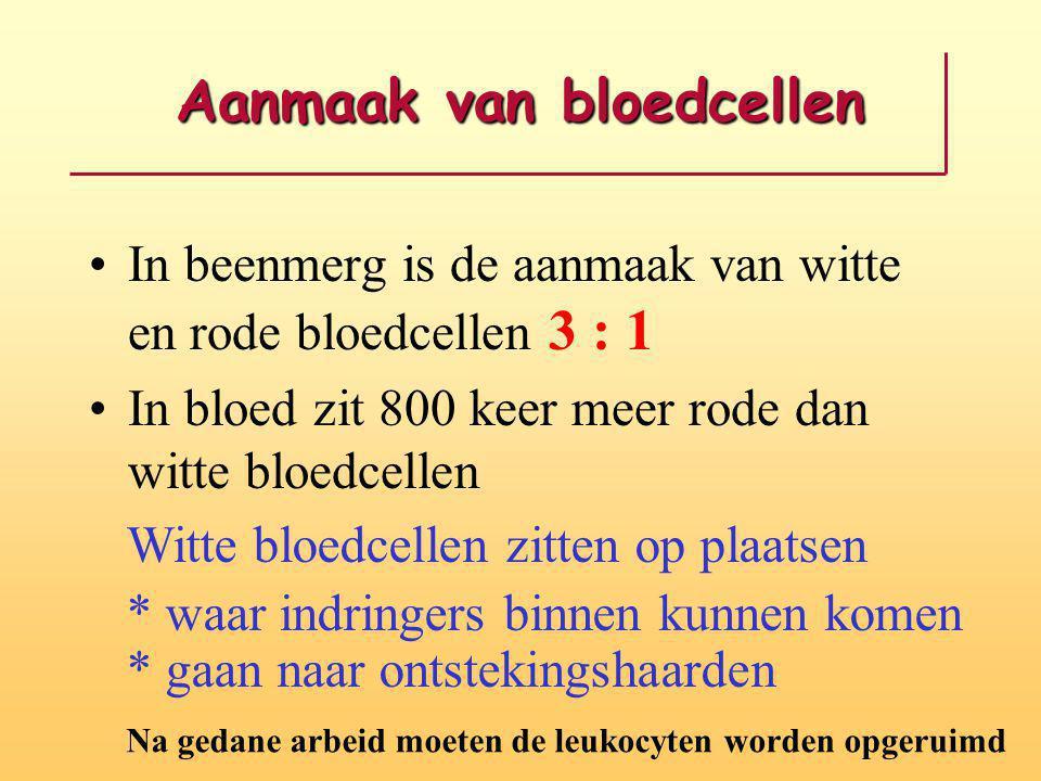 Aanmaak van bloedcellen