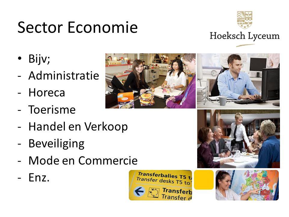 Sector Economie Bijv; Administratie Horeca Toerisme Handel en Verkoop