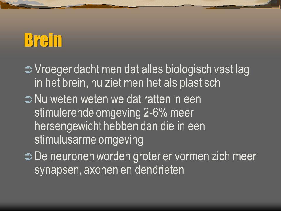 Brein Vroeger dacht men dat alles biologisch vast lag in het brein, nu ziet men het als plastisch.
