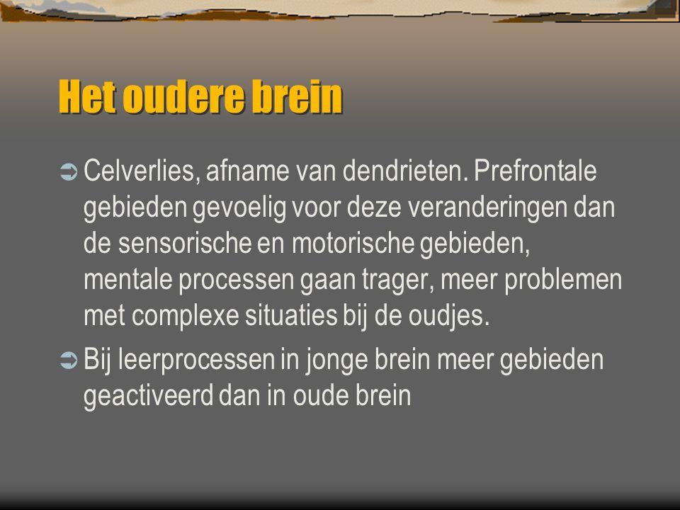 Het oudere brein