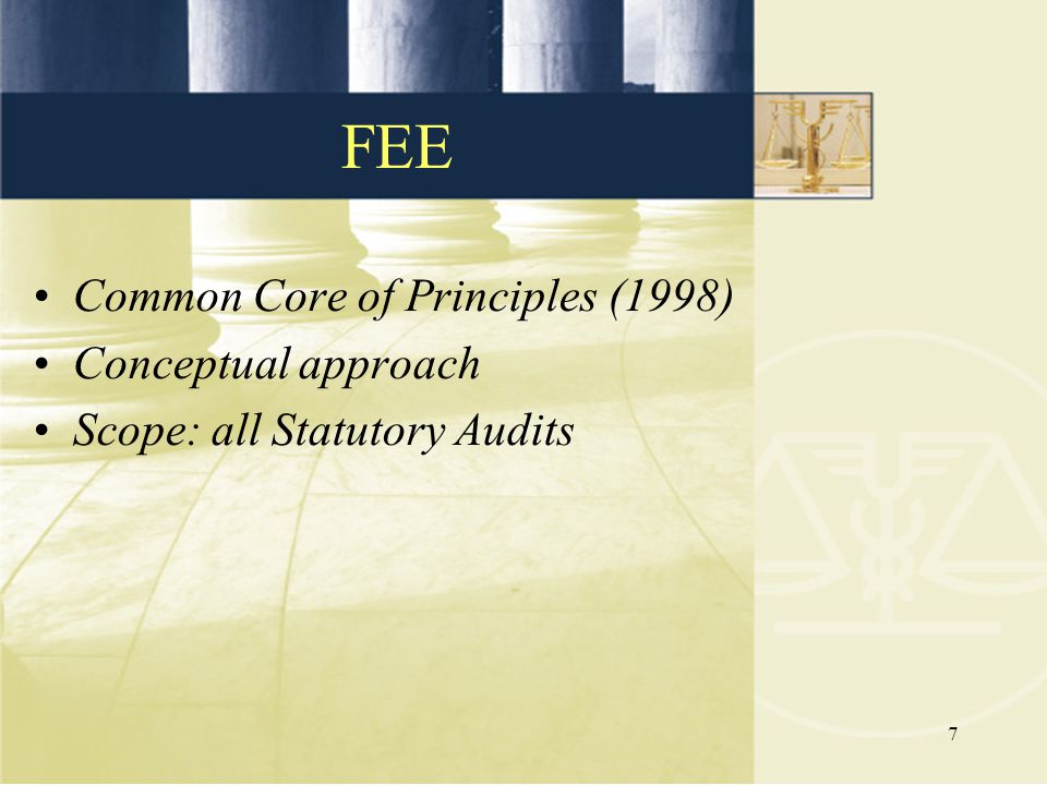 FEE Common Core of Principles (1998) Conceptual approach