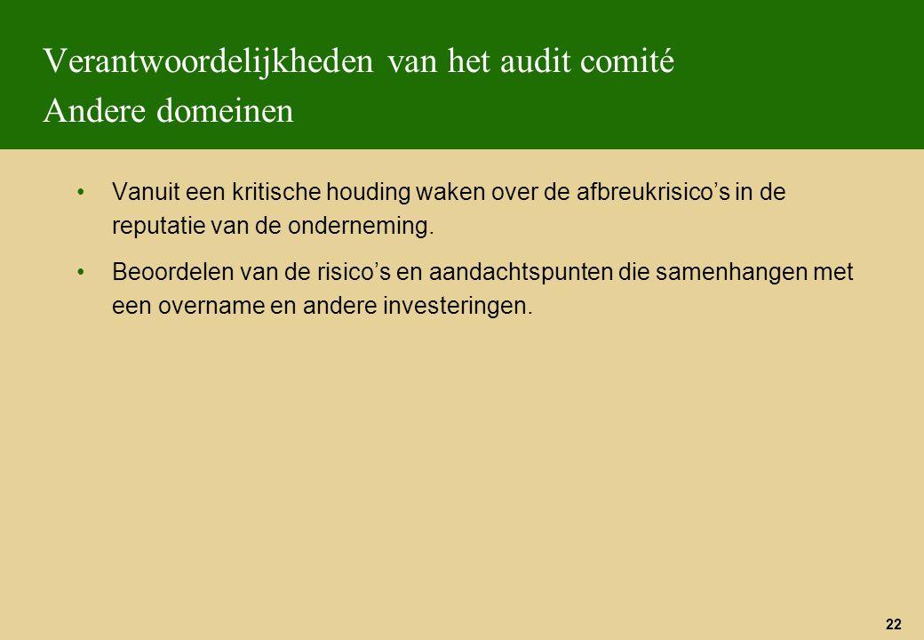 Verantwoordelijkheden van het audit comité Andere domeinen