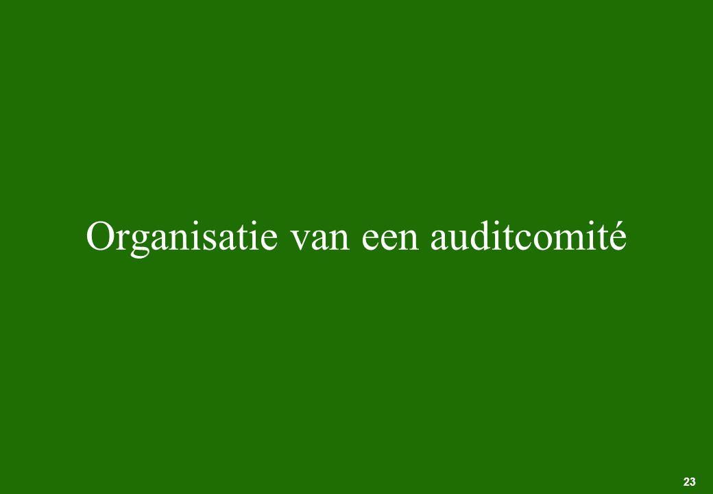 Organisatie van een auditcomité
