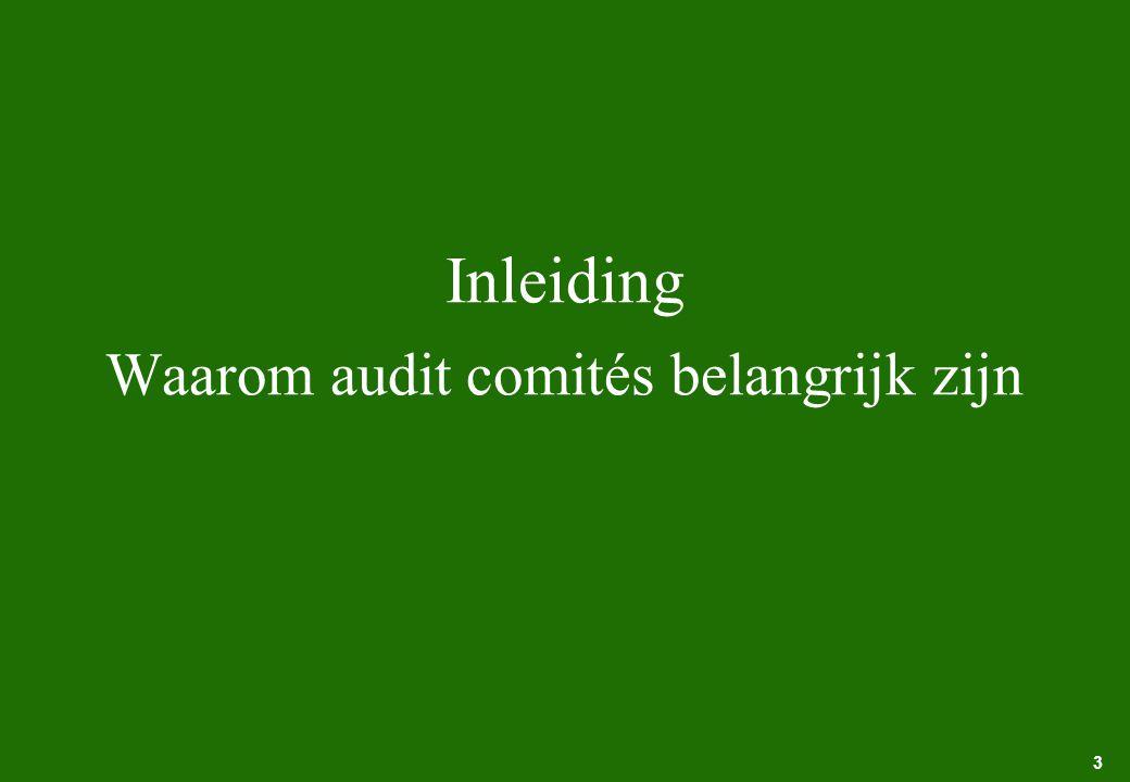 Inleiding Waarom audit comités belangrijk zijn