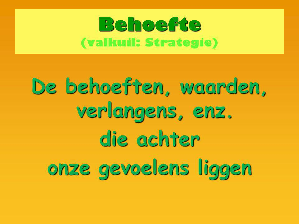 Behoefte (valkuil: Strategie)