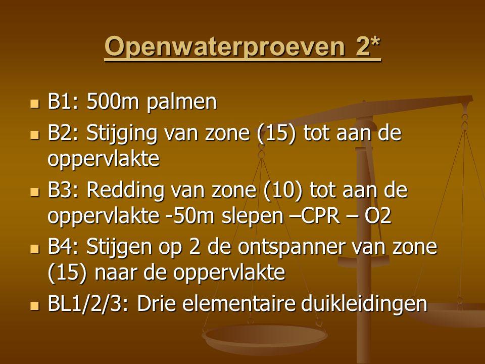 Openwaterproeven 2* B1: 500m palmen