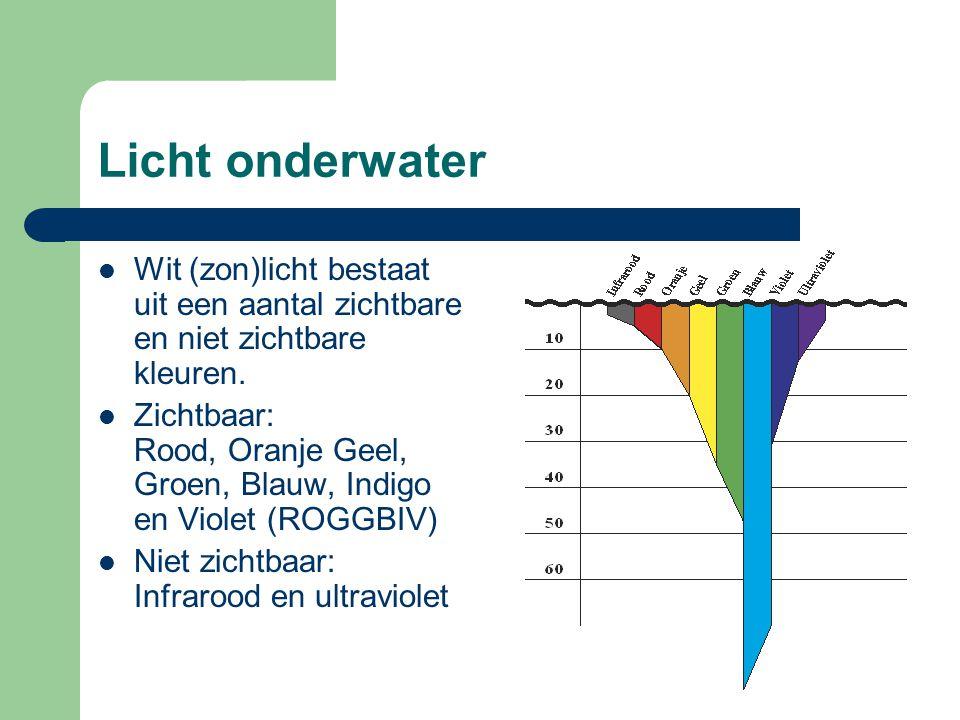Licht onderwater Wit (zon)licht bestaat uit een aantal zichtbare en niet zichtbare kleuren.