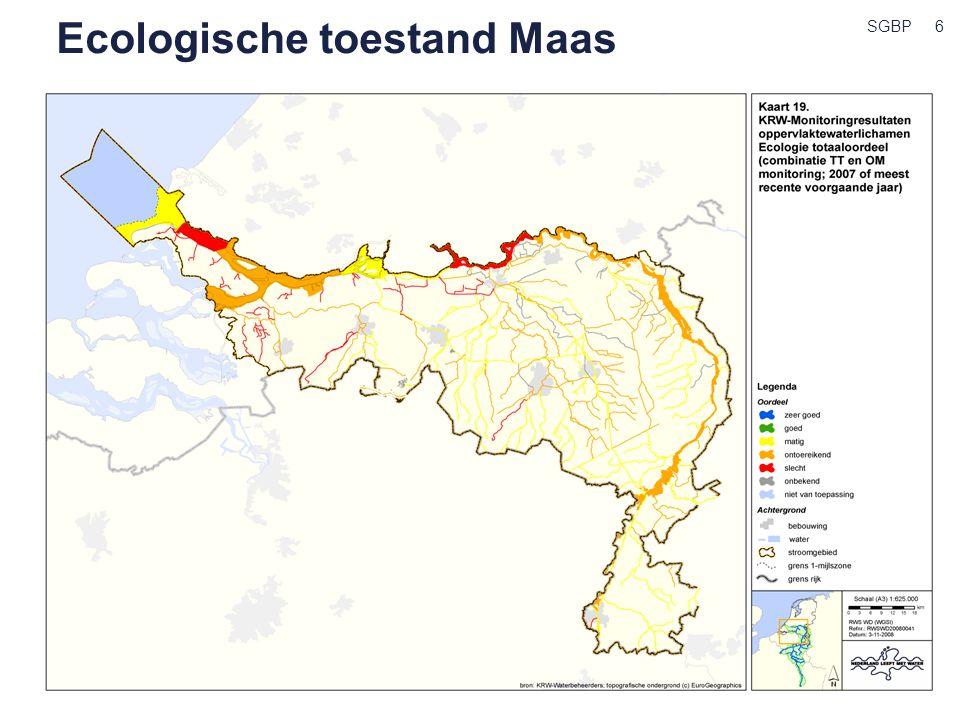 Ecologische toestand Maas