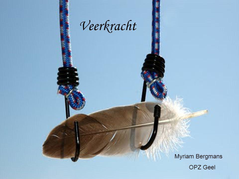 Veerkracht Myriam Bergmans OPZ Geel
