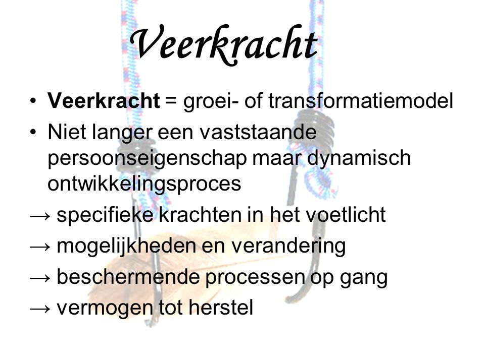 Veerkracht Veerkracht = groei- of transformatiemodel