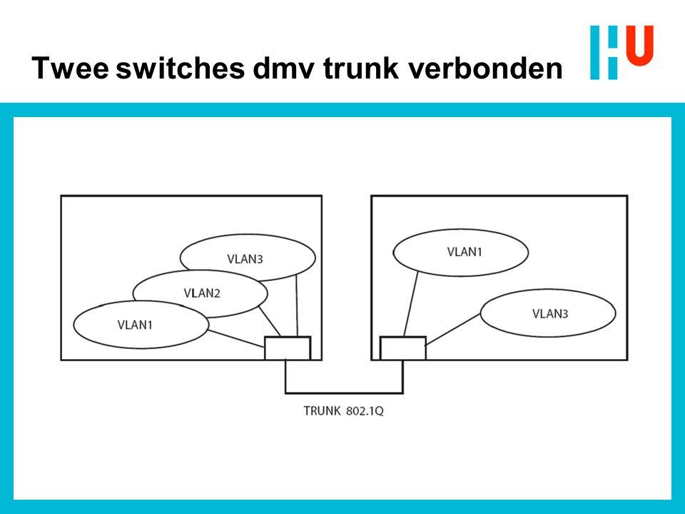 Twee switches dmv trunk verbonden
