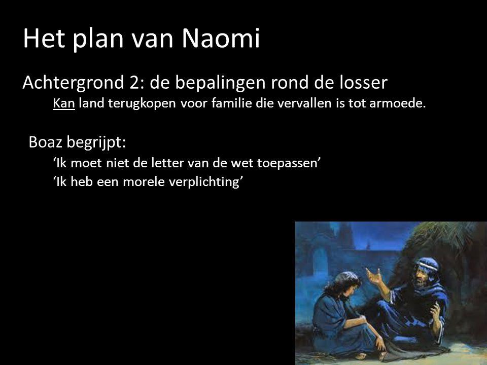 Het plan van Naomi Achtergrond 2: de bepalingen rond de losser