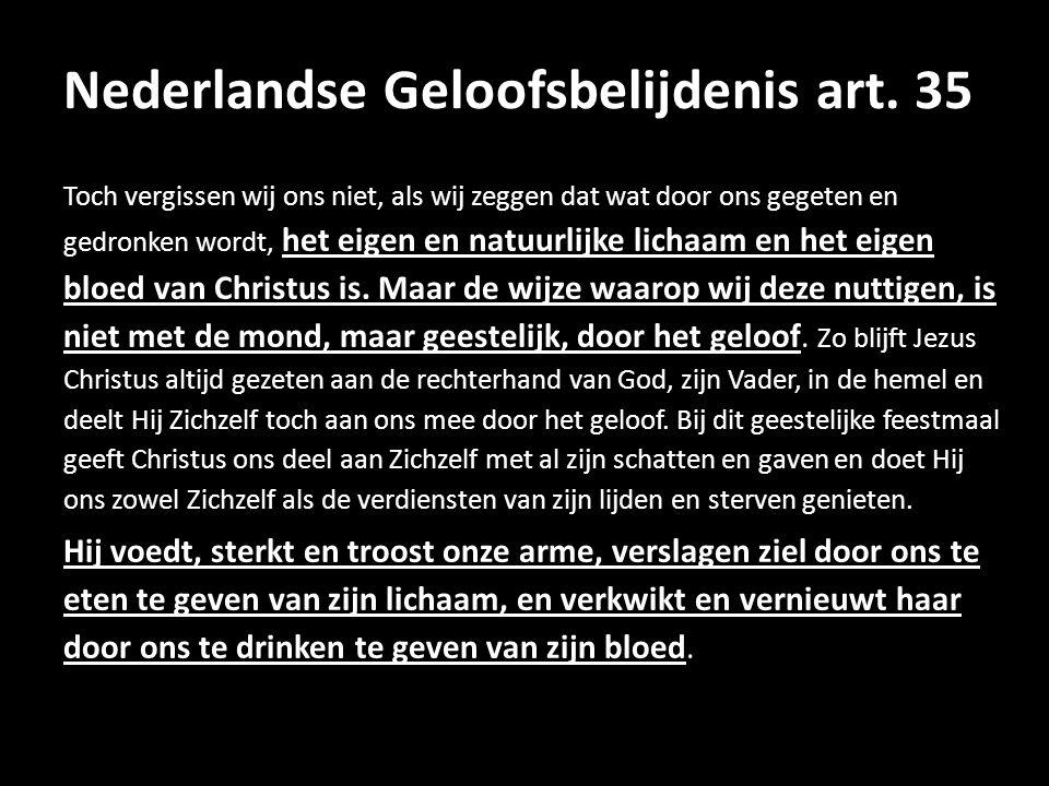 Nederlandse Geloofsbelijdenis art. 35