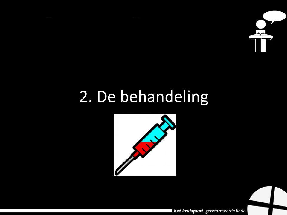 2. De behandeling