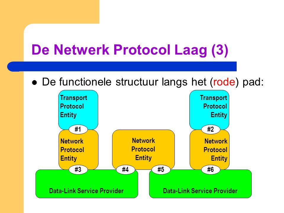 De Netwerk Protocol Laag (3)